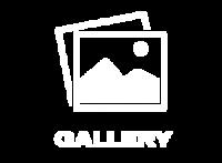 Gallery-300x220